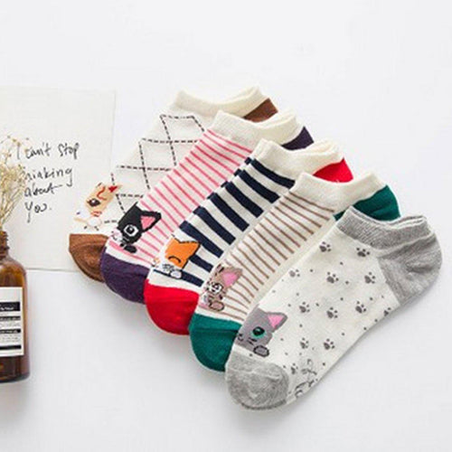 5 Pairs Kitty Cat Lovers Socks