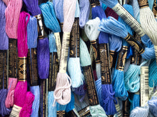 Load image into Gallery viewer, Embroidery Floss - Blue/Purple