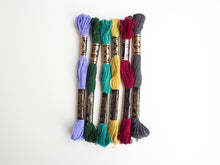 Load image into Gallery viewer, Embroidery Floss Mixed Bundle - Cool Tones