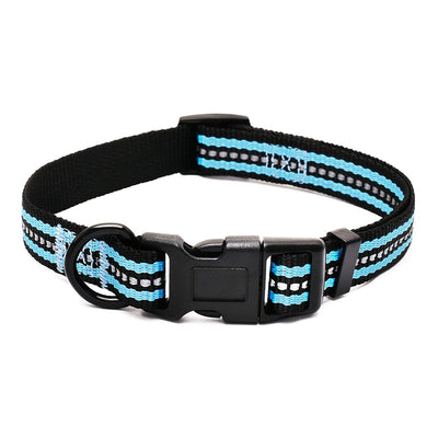 Double Bands Nylon Dog Collar