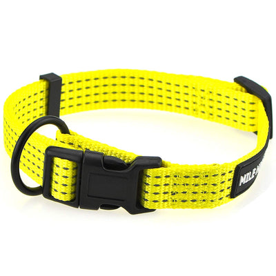 Stripes Dog Collar