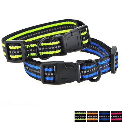 Band Nylon Dog Collar