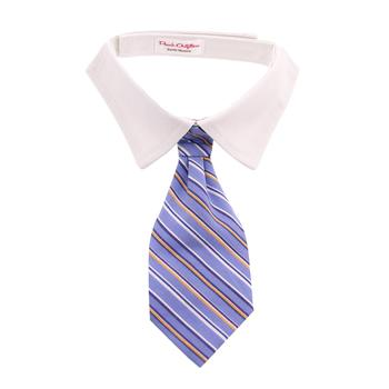Kyle Dog Shirt Collar and Tie  - Blue Striped