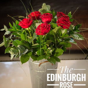 Edinburgh Rose