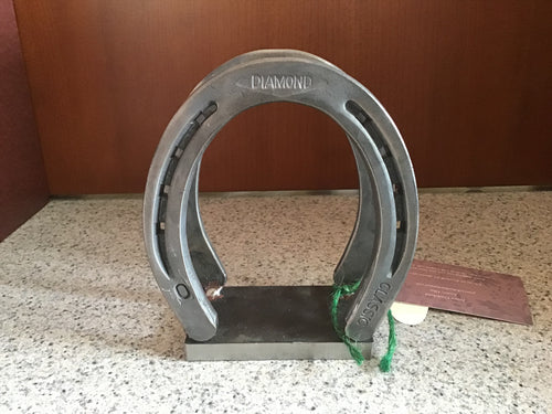 Horseshoe Napkin/Envelope Holder