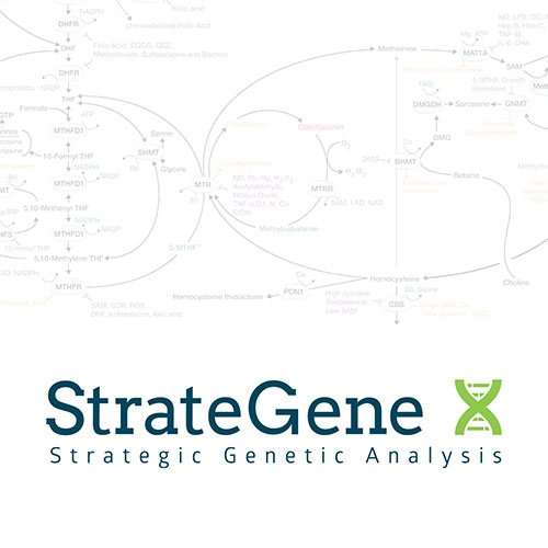 StrateGene Genetic Analysis