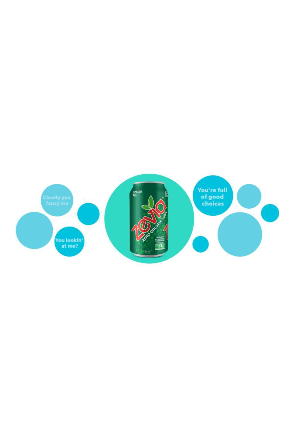 Zevia Ginger Ale 355ml