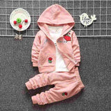 Light pink baby girl clothing set made of cotton that comes with a hooded jumper, pants and t-shirt that has roses on it.