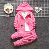 Pink baby girl clothing set made of cotton that comes with a hooded jumper, pants and t-shirt that has roses on it.