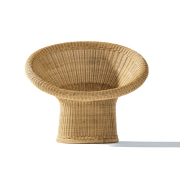 Rattan Lounge Chair E10