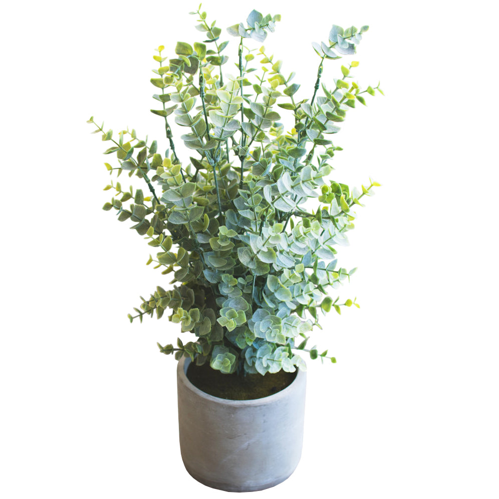 Artificial Faux Boxwood Plant In Cement Pot