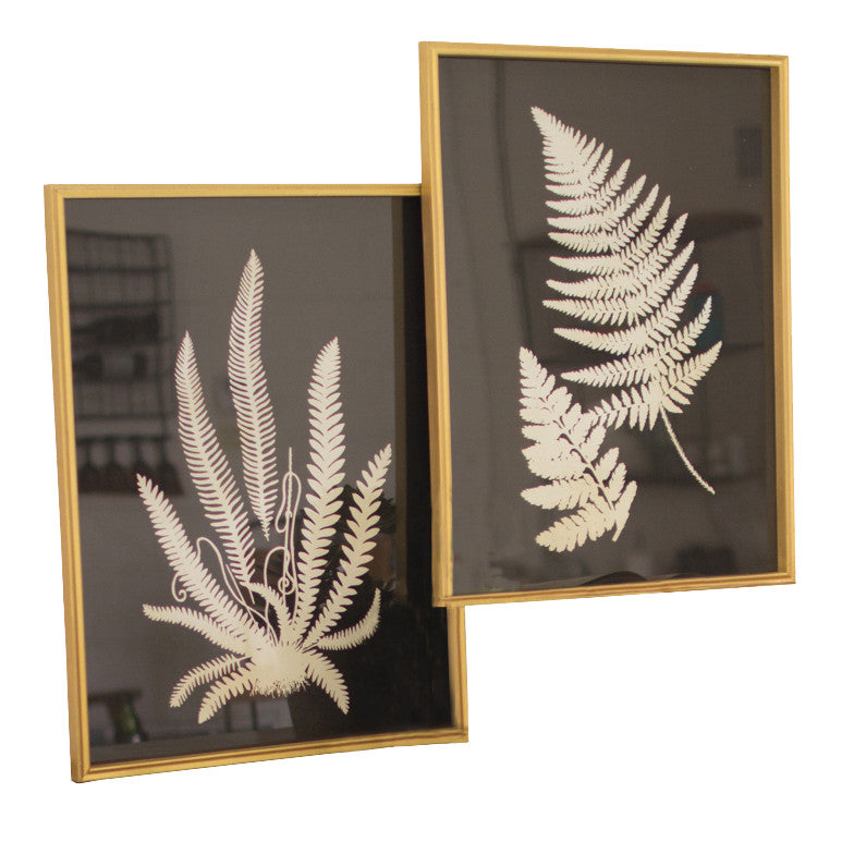 Black and white framed fern plant prints set of 2