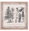 Tree Illustration Framed Farmhouse Cabin Wall Art - Set of 4