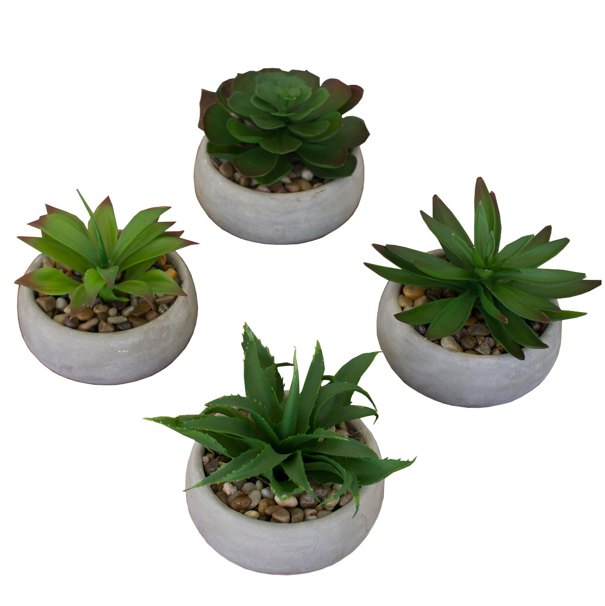 Industrial Modern Artificial Succulents In Cement Pots - Set of 4