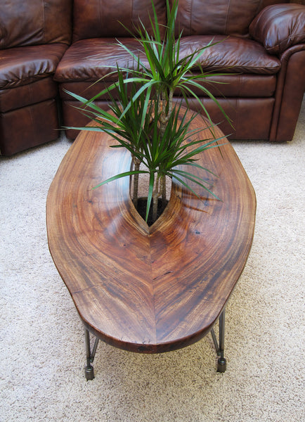 Slab Coffee Table With Plant Growing Through Woodwaves