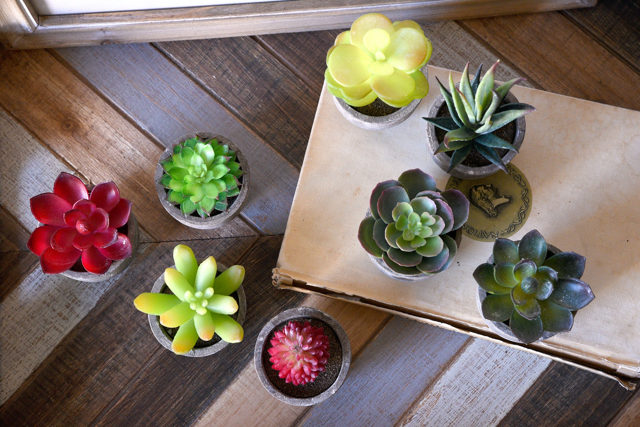 Modern Mini Artificial Succulent Plants in Pots - Set of 8