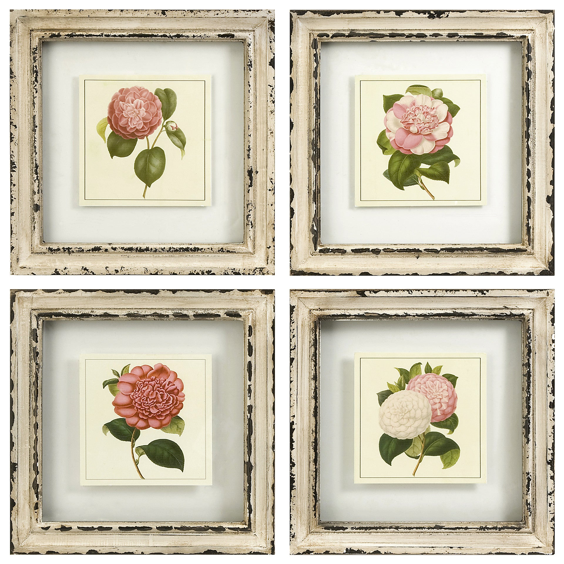 Pink Floral Flower Wall Art Prints Rustic Cream Frames - Set of 4