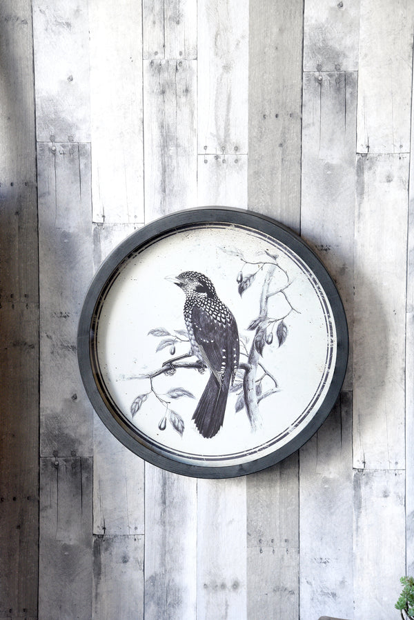 Bird Wall Art Illustrations With Round Frames Set Of 2