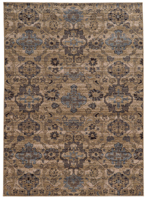 Tan and Light Blue Global Distressed Pattern Wool Area Rug
