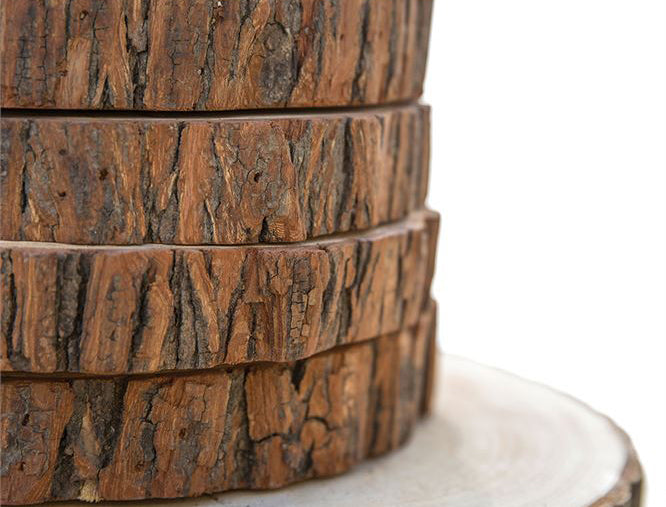 Round Wood Tree Slice Chargers - Set of 4
