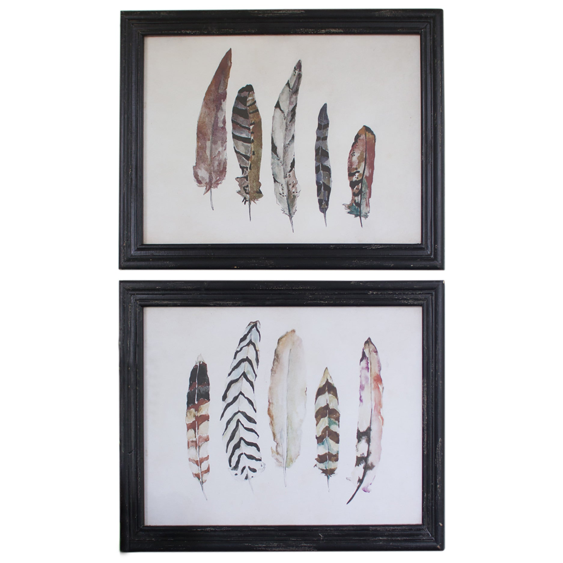 set of two framed feather prints with black frames