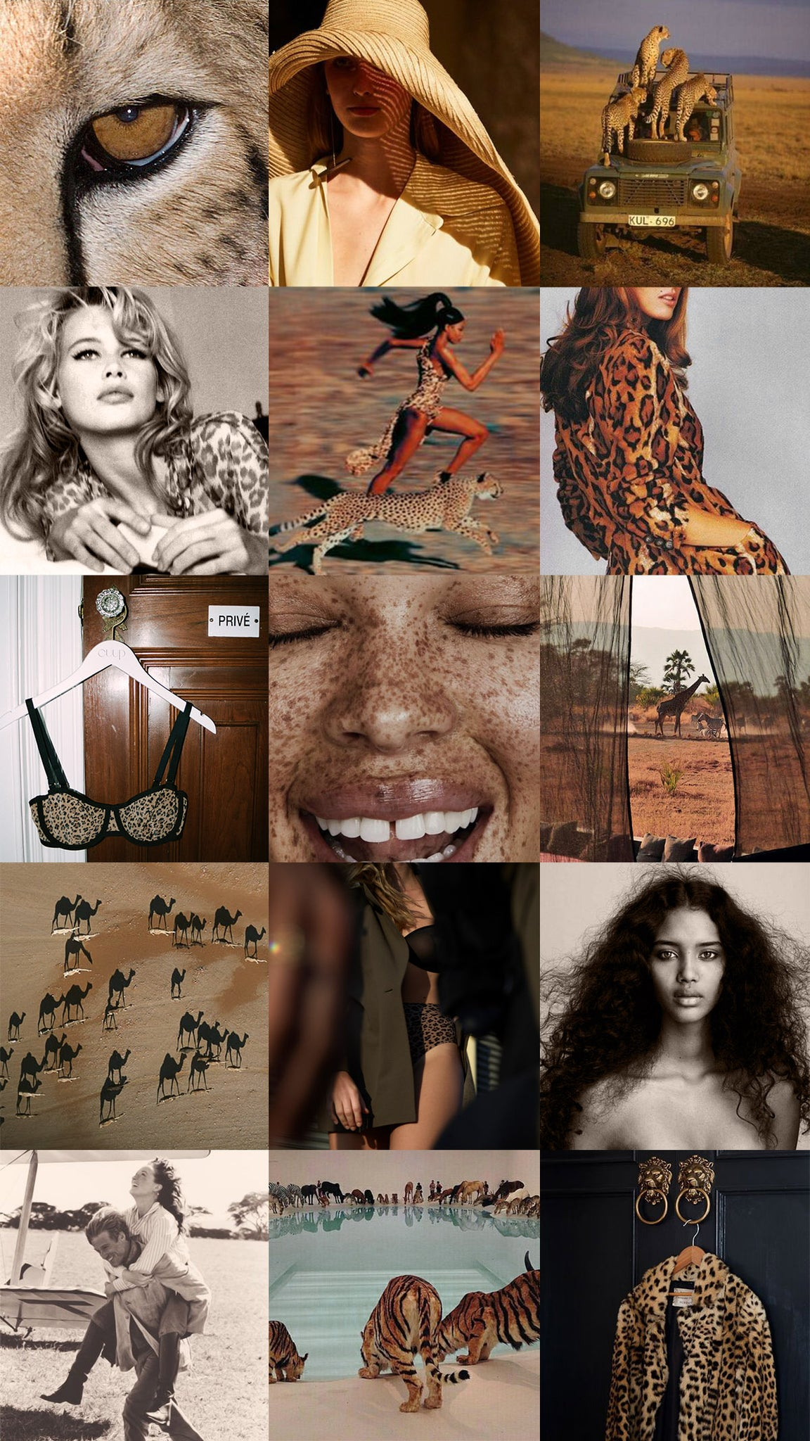 Animal vibes moodboard by CUUP