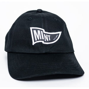 Mint Waving Flag Dad Hat