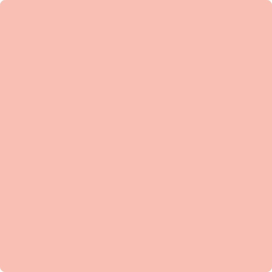 010 Pink Canopy
