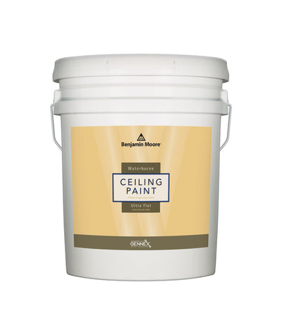 Benjamin Moore Ceiling Paint in 5 Gallon Pails from The Color House in Rhode Island.