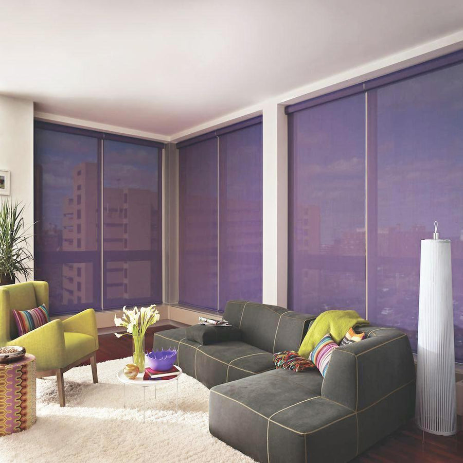 Hunter Douglas Designer Roller Shade Window Blind in REGION