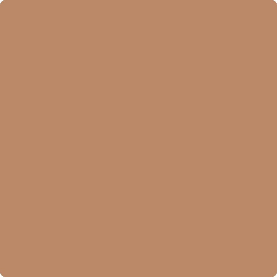 Benjamin Moore Color CC-360 Potters Clay