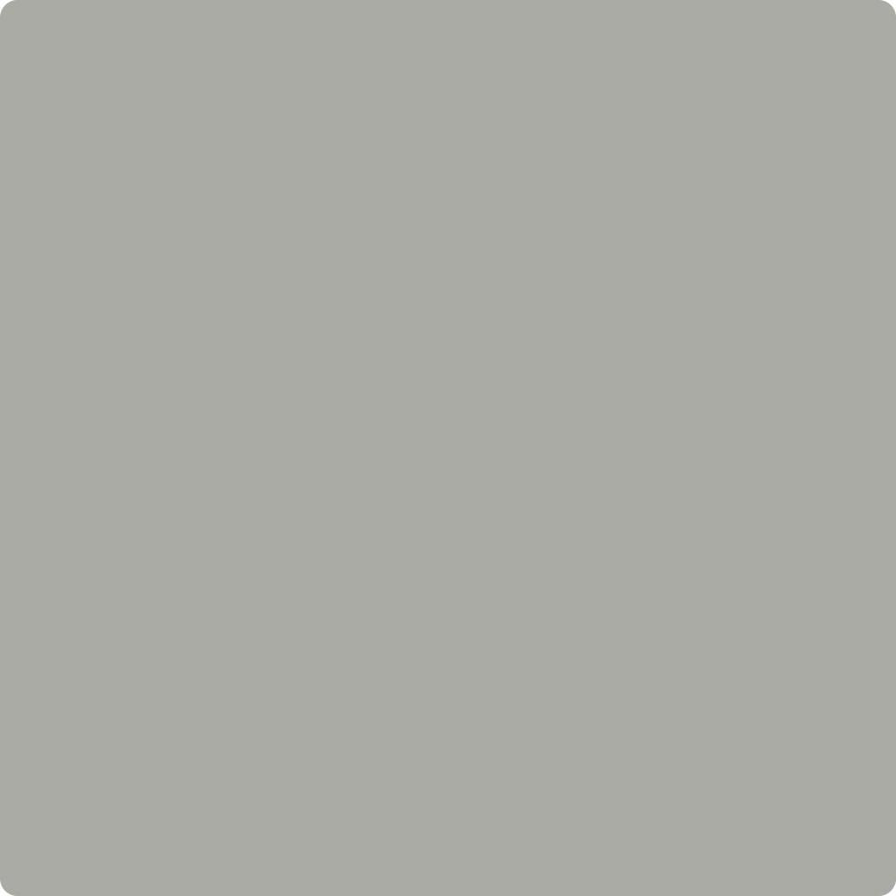 Benjamin Moore 39 S Hc 179 Platinum Gray The Color House Thecolorhouse