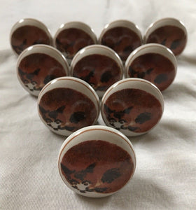 Drawer/Door Knobs - Porcelain on Brass - Recumbent Fox Image - Vintage