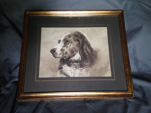 Print - Framed and Matted Sepia Print of a Beautiful Spaniel With Collar