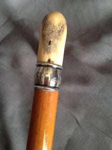 Cane - Sidesaddle Cane with Sterling Silver Collar and Antler Handle