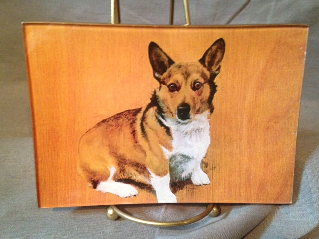 Tray - Glass - Corgi