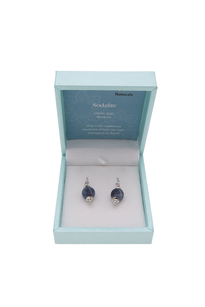 Sodalite Naturals Earrings