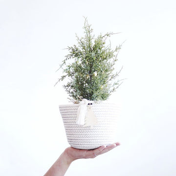 MINI COTTON BOWL BASKET