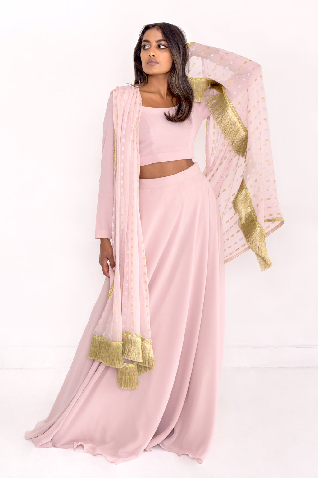 Pink Lehenga set with gold fringe. Beautiful Indian bridal dress.