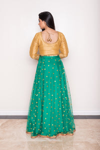 women's Green net Indian lehenga skirt with mirror embroidery