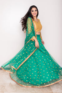 Women's Green net lengha with mirrors embroidery