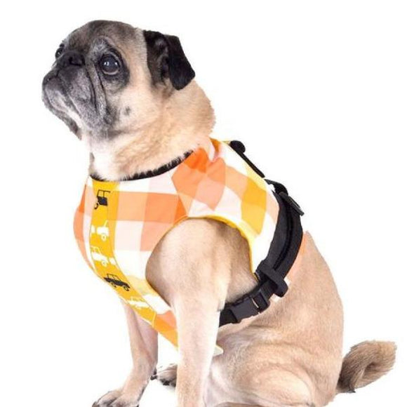 Dog Harness Colorful Checkered L Harnesses