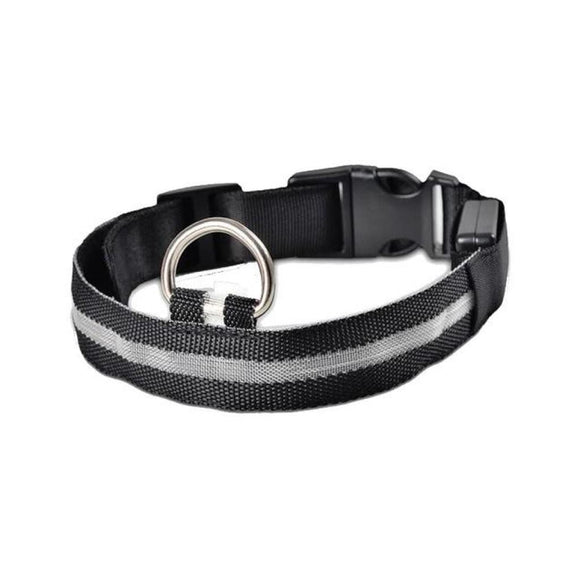 Electric Night-Time Led Collar Black / L Head