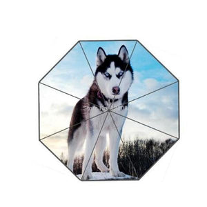 Fashionable Husky-Design Umbrella Umbrellas