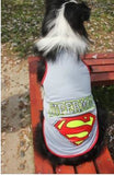 Large Cotton Dog Superman T-Shirts/ Costume White / 3Xl Clothing