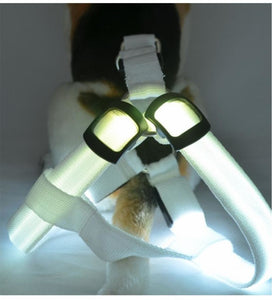 Led Dog Harness Nylon With Flashing Lights Harnesses