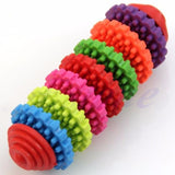 Rainbow Dental Chew Toy 7 Colors / M Toys