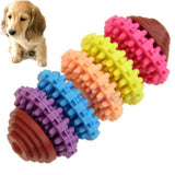 Rainbow Dental Chew Toy 5 Colors / M Toys