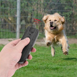 Ultrasonic Dog Repellent Device Training And Behaviour