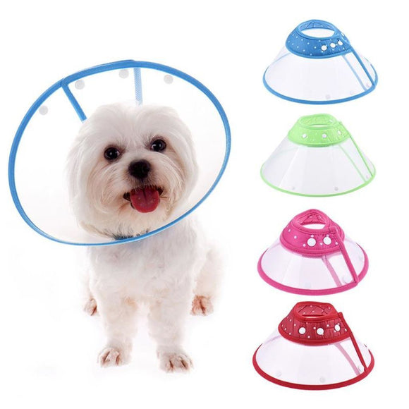 Wound Healing Elizabethan Collar Assorted / L Cone